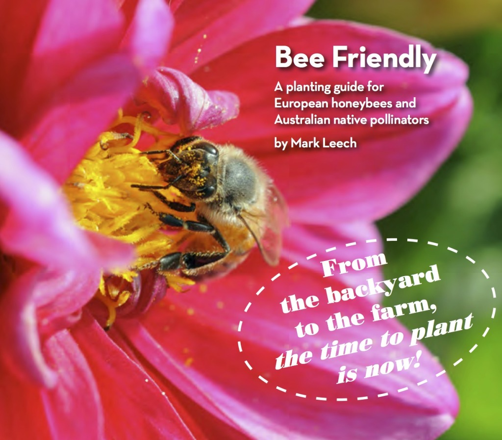 bee friendly cover cropped