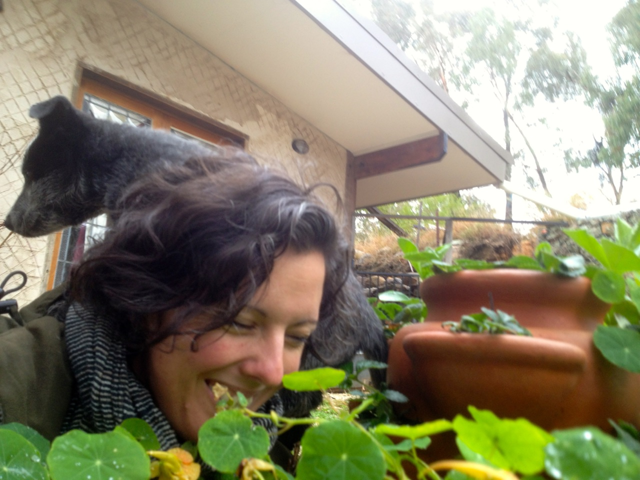 Trying to take a reasonable selfie in the tinyhouse garden in the rain for a gardening magazine. I did not succeed.
