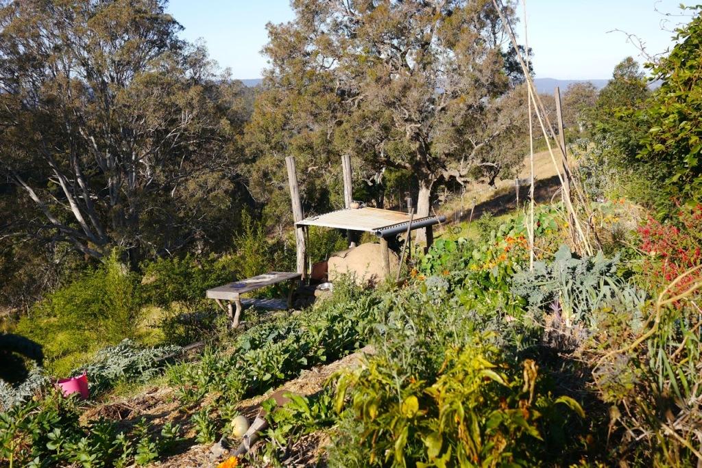 1410 visiting autumn farm - 04