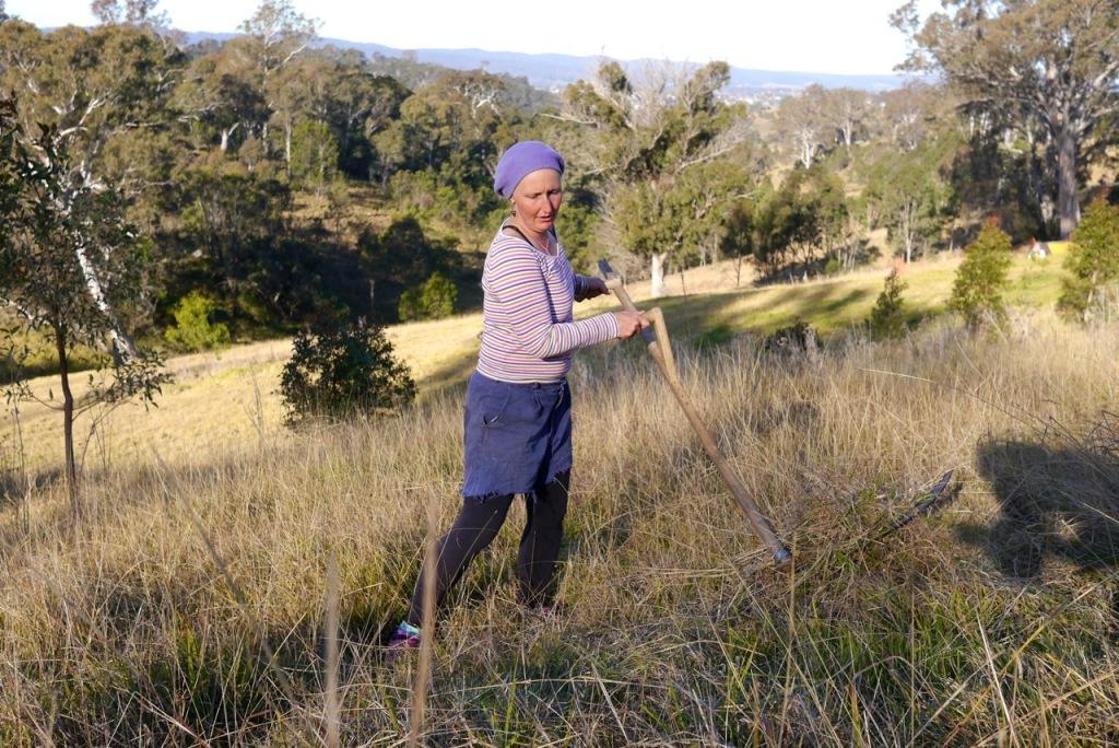 1410 visiting autumn farm - 05