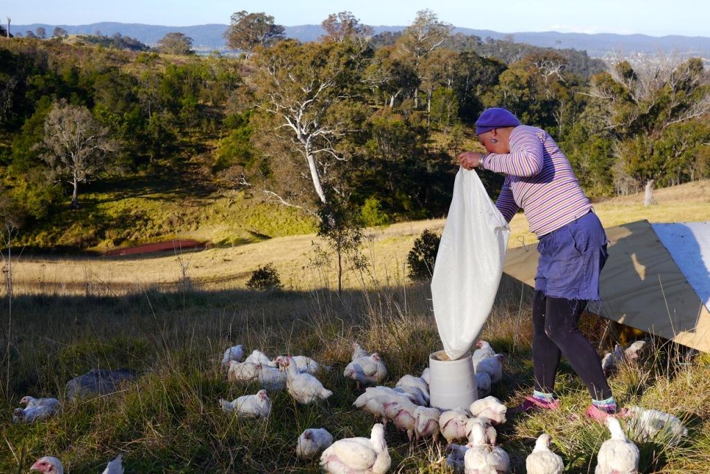 1410 visiting autumn farm - 07