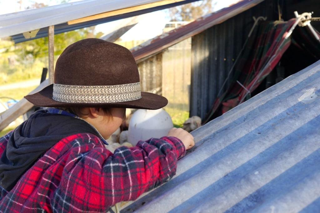 1410 visiting autumn farm - 11