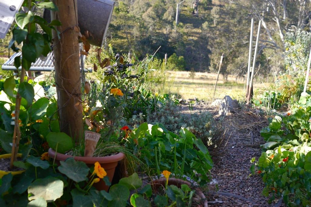 1410 visiting autumn farm - 12