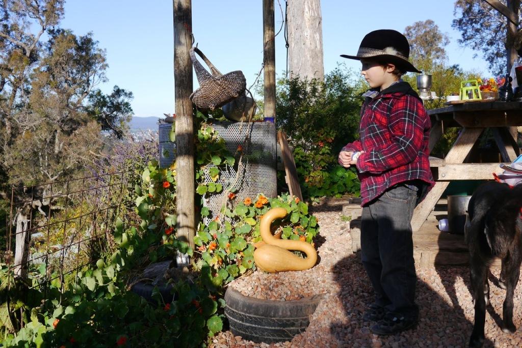 1410 visiting autumn farm - 13