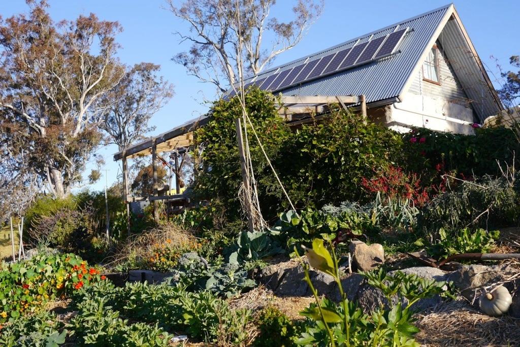 1410 visiting autumn farm - 17