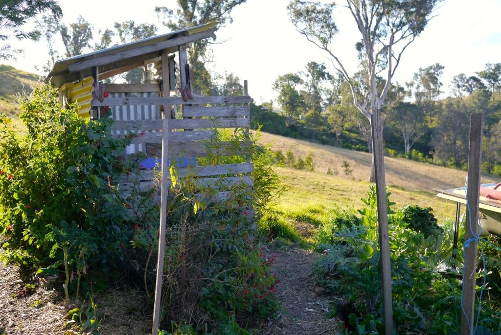1410 visiting autumn farm - 36