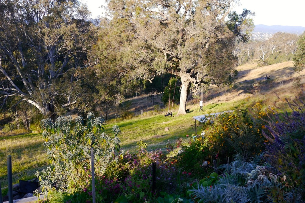 1410 visiting autumn farm - 39