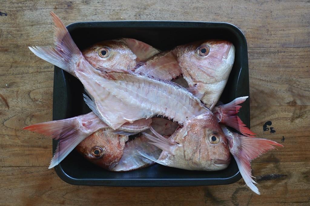 fish terrine 670